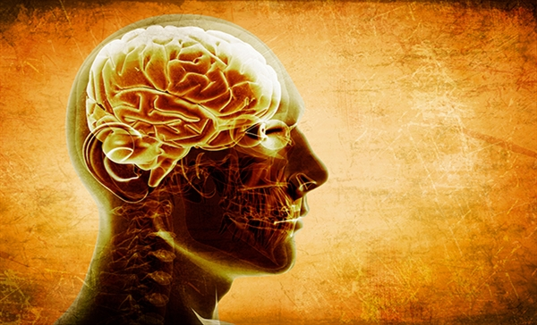 """Chemotherapy treatment can affect a patient's memory or attention span. It is often referred to as """"chemo brain."""" An individual may suffer from resulting short-term memory loss.8"""