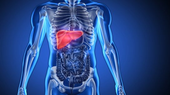 Damage or injury to the liver caused by a drug or other agent results in hepatotoxicity. Certain chemotherapy drugs are toxins, which can build up in the body faster than the liver can process them, and ultimately, can result in liver damage.11