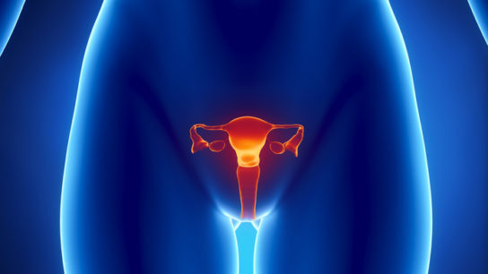 Study results show that women who carry a BRCA1 mutation have a shorter reproductive lifespan than n