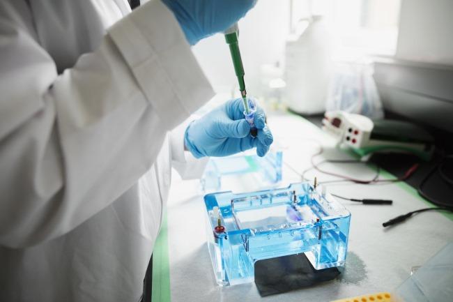 Disruptions of the p53 tumor suppressor pathway play a key role in tumorigenesis and tumor progressi