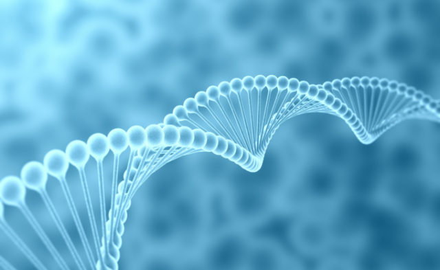 There is no association between common genetic variants and prostate cancer survival.