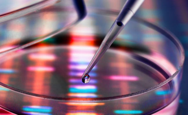 A new white paper emphasizes the benefits of germline testing.