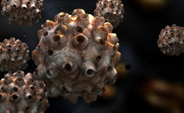 FDA Panel Recommends HPV Test That Could Replace Pap