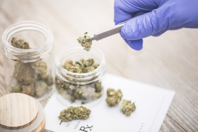 While some researchers are attempting to determine whether cannabis has any anti-tumor activity, the