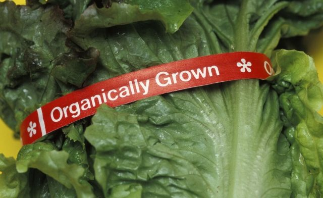 No Cancer Prevention Benefit From Organic Food