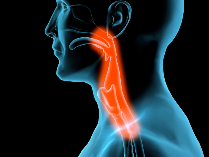 Head & Neck Cancer News | Throat & Mouth Cancer Articles