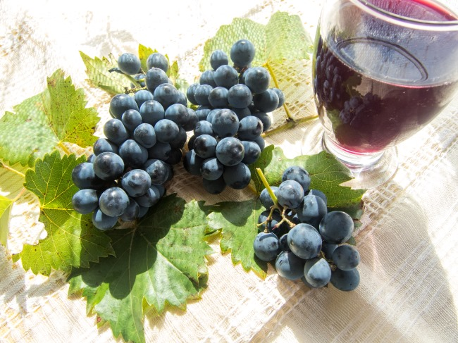 Though mechanisms of anticancer effects of resveratrol have been identified, the ability to translat