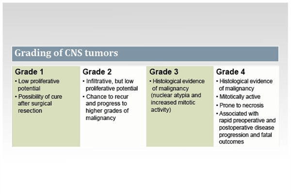 The World Health Organization (WHO) grading of central nervous system (CNS) tumors is based on histologic features of the tumor. Characteristics pertaining to grades I to IV are described here.2