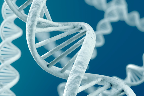 Embracing all the myriad variations of the human genome should, in theory, lead to rewards that all