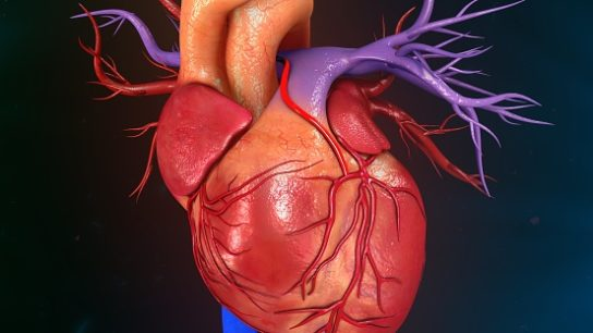 Researchers claim that systems medicine could reduce cardiovascular toxicity caused by TKI therapy.