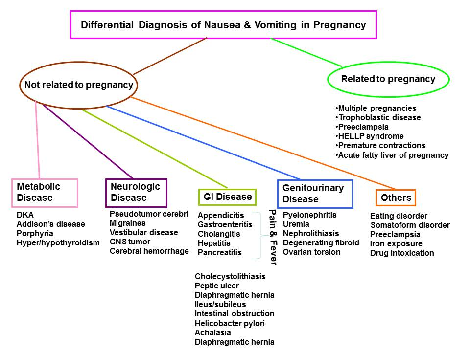 Hyperemesis - Cancer Therapy Advisor