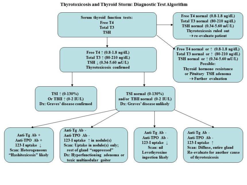 Thyrotoxicosis/thyroid storm - Cancer Therapy Advisor