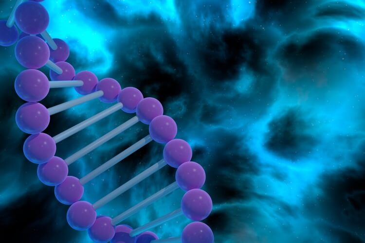 Researchers identified 15 genes that they said independently predict the survival outcome of patient