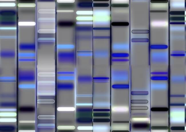 Researchers establish a Chinese-specific BRCA database to cover nearly all of the BRCA variation information currently known across this population.