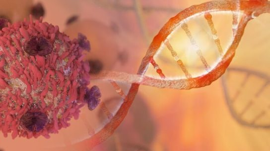 Despite its limitations, ctDNA is emerging as a potentially powerful diagnostic tool.