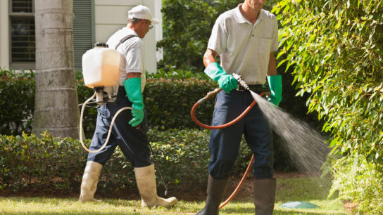 Men using portable spray rig on tree and grass environment.