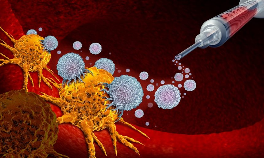 cancer immunotherapy illustration