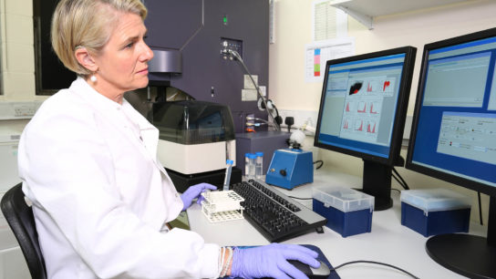 A clinician uses a flow cytometer